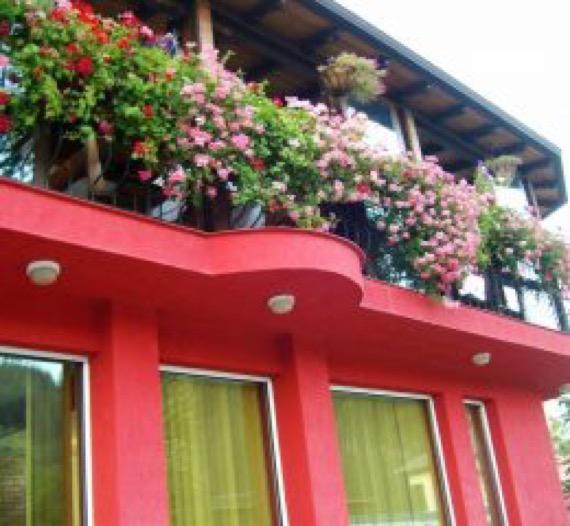 Хотел Флора , Златоград